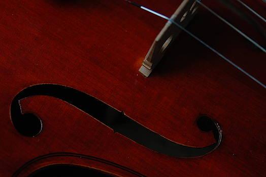 Viola 2 by Kim Blumenstein