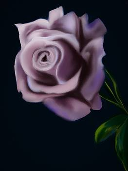 Violet Rose by Michele Koutris