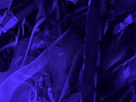 Violet Shine I by Orphelia Aristal