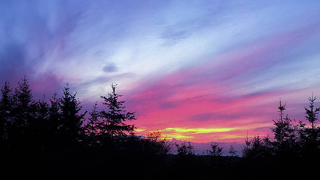 Violet Sunset II by Pacific Northwest Imagery