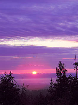 Violet Sunset III by Pacific Northwest Imagery