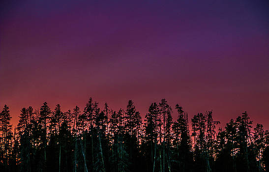 Violet Sunset in Yellowstone National Park by Chaznik Raab