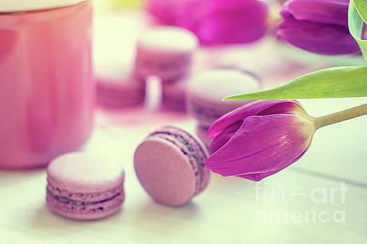 Violet sweet delicious macaroons and fresh tulips by Victoria Kondysenko