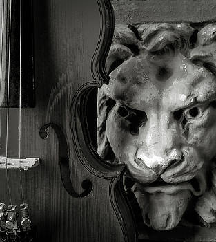 Violin And Lion Face Black And White by Garry Gay