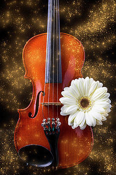 Violin And White Daisy Magic by Garry Gay