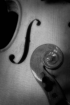 Violin F Hole And Scroll by Garry Gay