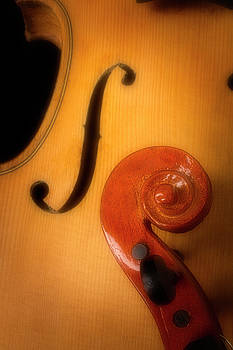 Violin F Hole And Scrool by Garry Gay