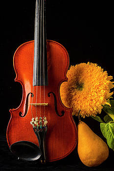 Violin Sunflower And Pear by Garry Gay