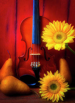 Violin Sunflower And Pears by Garry Gay