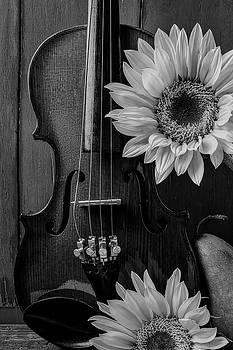 Violin Sunflower Still Life by Garry Gay