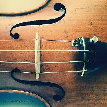 The Violin by Steven Digman