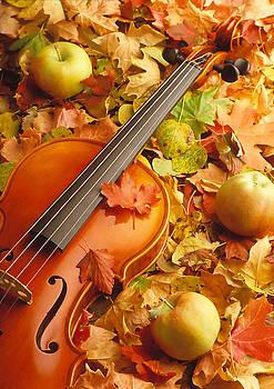 Utah Images - Violin with Fallen Leaves