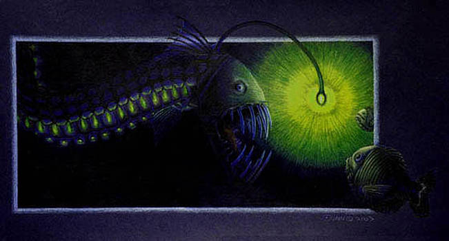 Viperfish by Jason Dunn