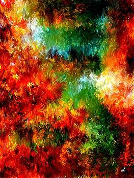 Virgin forest by Rafi Talby