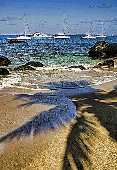 Dennis Cox WorldViews - Virgin Gorda Beach