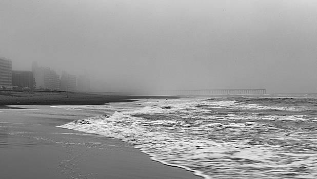 Virginia Beach, VA by Frank White