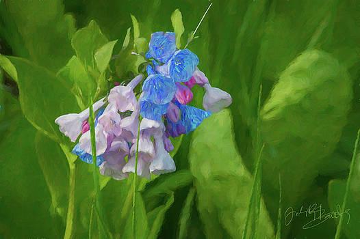 Judith Barath - Virginia Bluebell at Springtime