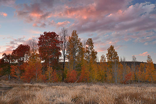 Virginia Canyon Fall Colored Sunset by Dean Hueber