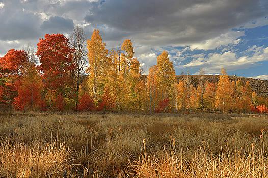 Virginia Canyon Fall Colors by Dean Hueber