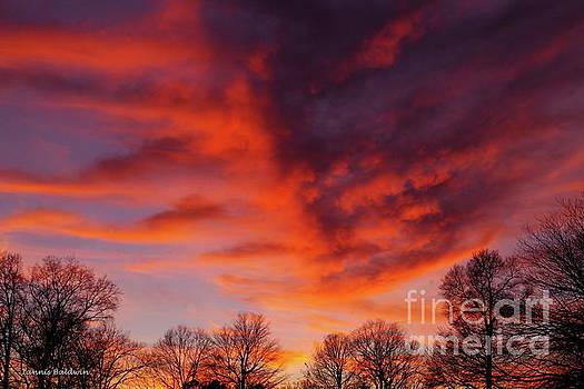 Virginia Sunset by Tannis Baldwin