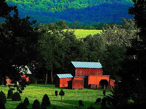 Virginia Valley View by Joyce Kimble Smith