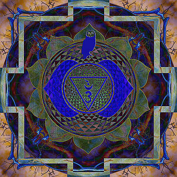 Vision Mandala by Julian Venter