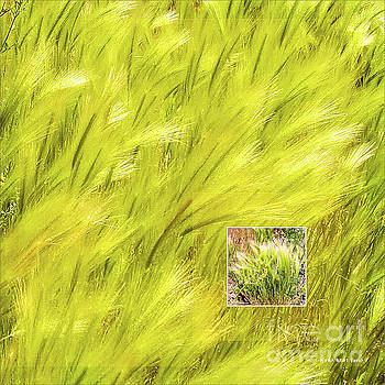 Visions of Spring Green Breeze by Mona Stut