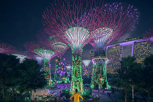 Visiting Singapore by Evgeny Vasenev