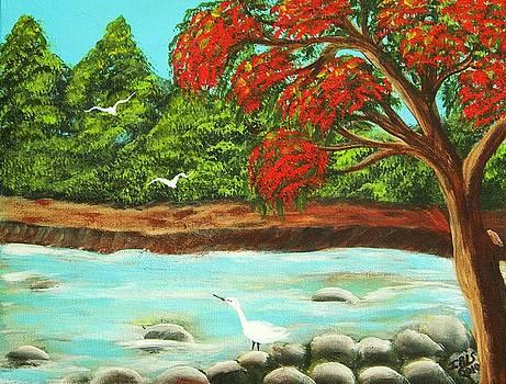Vista En Puerto Rico by Iris  Mora