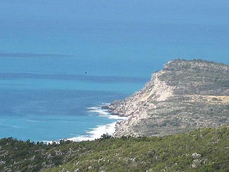 Vista by France Garrido