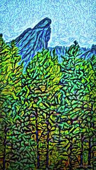 Vista Through The Woods by Joel Bruce Wallach