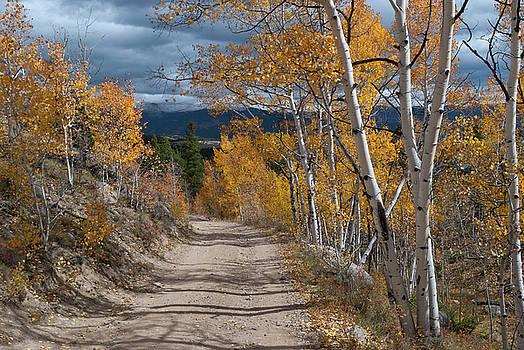 Vivid Autumn Colors of Colorado by Cascade Colors