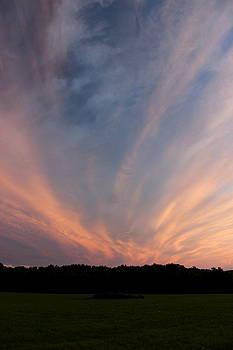 Vivid Summer Sky II by Brian Lucia