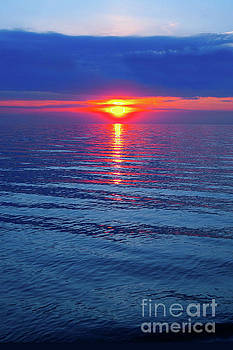 Ginny Gaura - Vivid Sunset