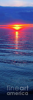 Vivid Sunset - Vertical Format by Ginny Gaura