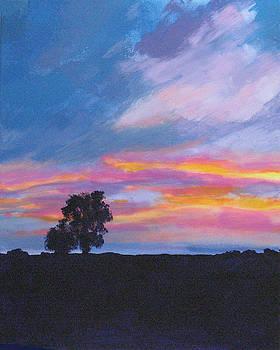 Vivid Sunset by Wes Loper