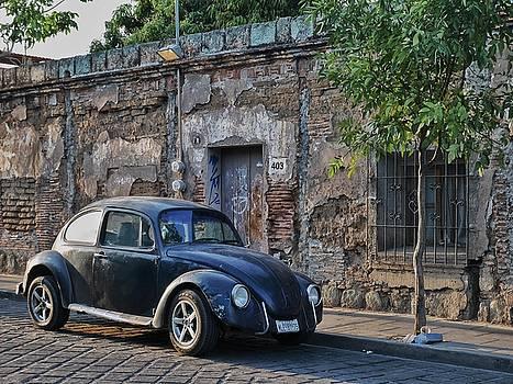 Volkwagen Beetle by Steffani Cameron