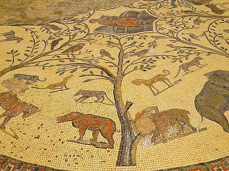 Volubilis Morocco Tree Mosaic by Exploramum Exploramum