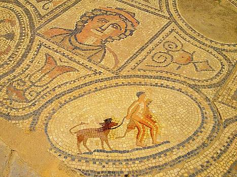 Volubilis Morocco Walking the Dog Mosaic by Exploramum Exploramum
