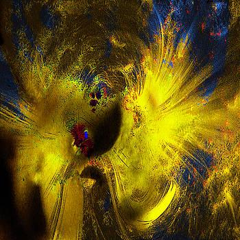 Vortex by Diana Boyd