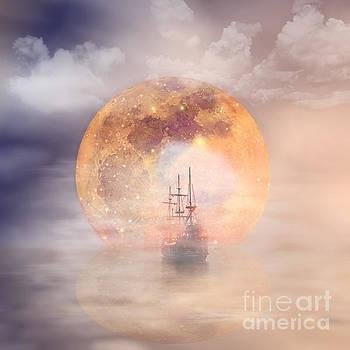 Voyage by Barbara Dudzinska