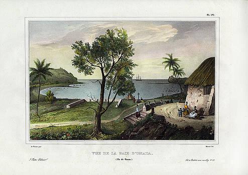 Vue De La Baie dUmata Umatic Bay by dUrville duSainson