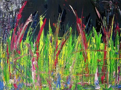 W64 - nightly field by Kunst mit Herz Art with Heart