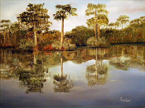 Waccamaw River by Phil Burton