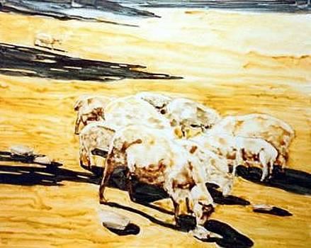 Wade's Sheep by Helen Hickey