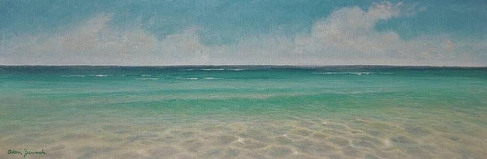 Wading  by Alan Zawacki by Alan Zawacki