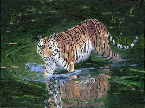 Wading in the Shadows by Deborah Butts
