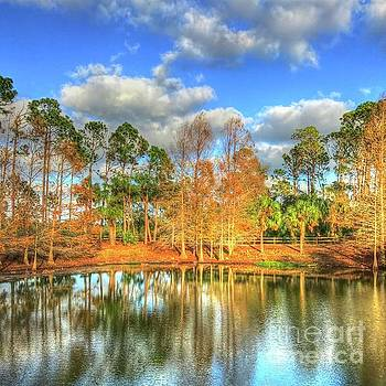Wadsworth Park by Debbi Granruth