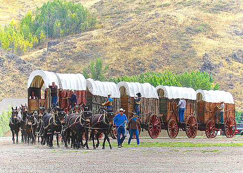 Wagon Days by Amy G Taylor