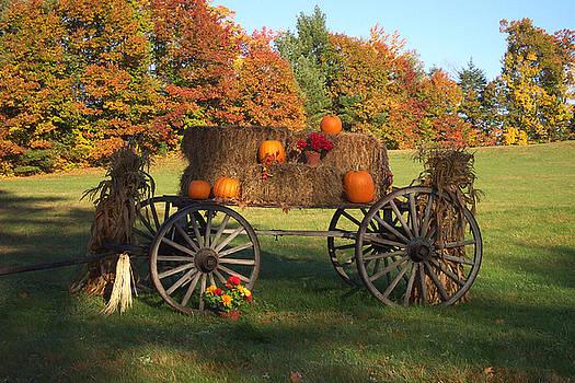 Wagon Sunny Fall Day by Linda Drown